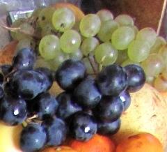 Le raisin et le vin riches en rutine un bon flavonoïde